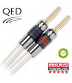 QED Reference XT40i